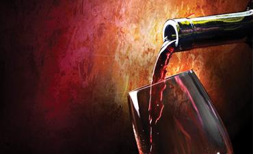 Prehrambena industrija in vinarstvo